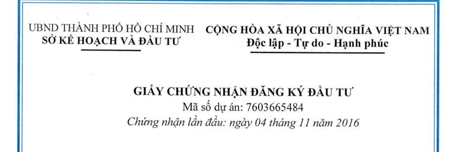 Đầu tư nước ngoài vào Việt Nam