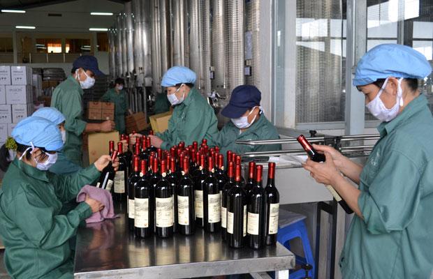 thành lập công ty sản xuất rượu thủ công