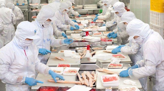 Thành lập công ty ngành thực phẩm năm 2020