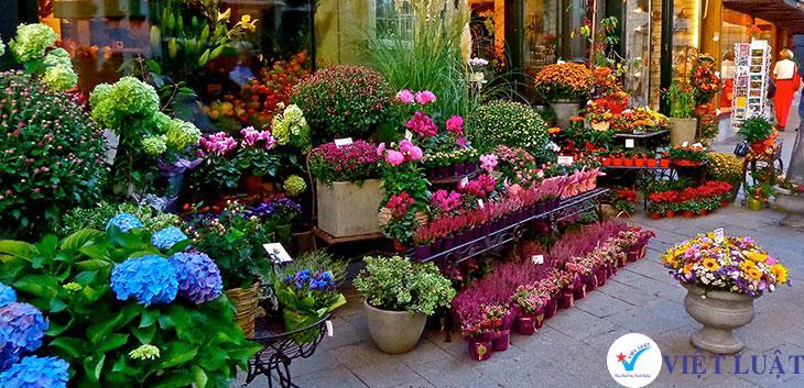 Mở cửa hàng mua bán hoa tươi, quà lưu niệm năm 2021