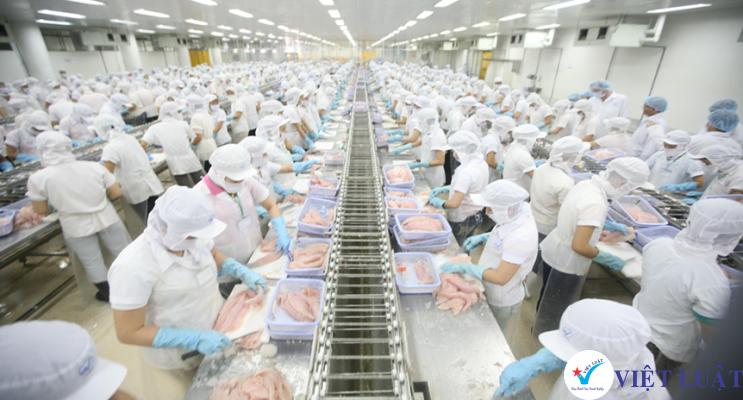 Thành lập công ty ngành chế biến thực phẩm tại TP.HCM
